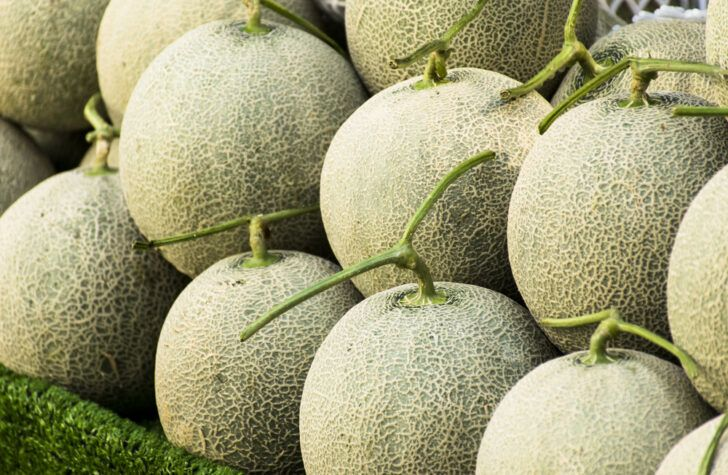 How To Pick A Perfectly Ripe Cantaloupe Forkly
